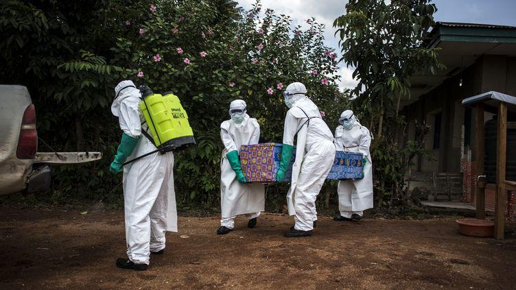 Des équipes de santé évacue un malade d'Ebola dans le Nord-Kivu, en République démocratique du Congo. (JOHN WESSELS / AFP)