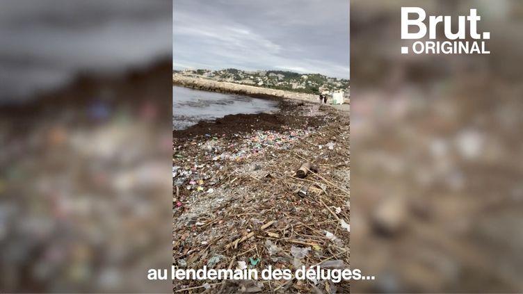 VIDEO. À Marseille, mobilisation générale pour nettoyer les plages (BRUT)