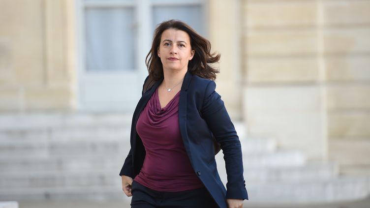 Cécile Duflot au palais de l'Elysée, à Paris, le 15 novembre 2015. (STEPHANE DE SAKUTIN / AFP)