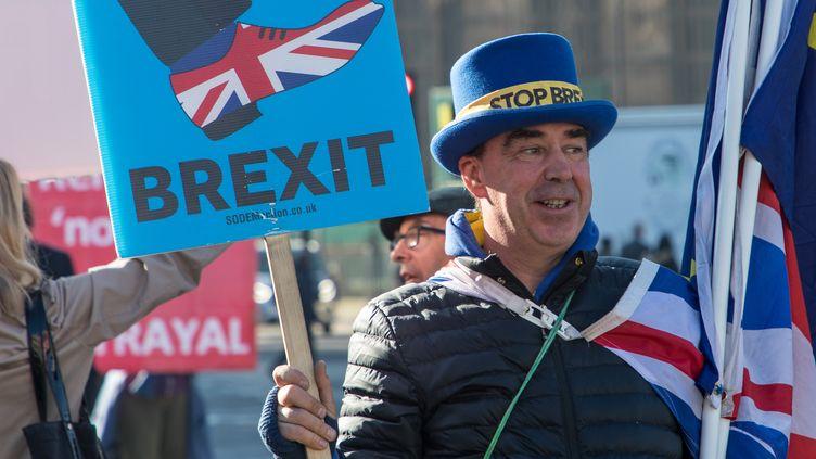 """Steve Bray, plus connu sous le sobriquet de """"monsieur Stop Brexit"""", manifeste devant le Parlement à Londres, le 26 février 2019. (MARIE-VIOLETTE BERNARD / FRANCEINFO)"""