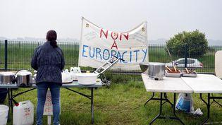 Une manifestante opposée au projet EuropaCity lors d'un rassemblement, le 19 mai 2019 à Gonesse (Val-d'Oise). (ALAIN JOCARD / AFP)