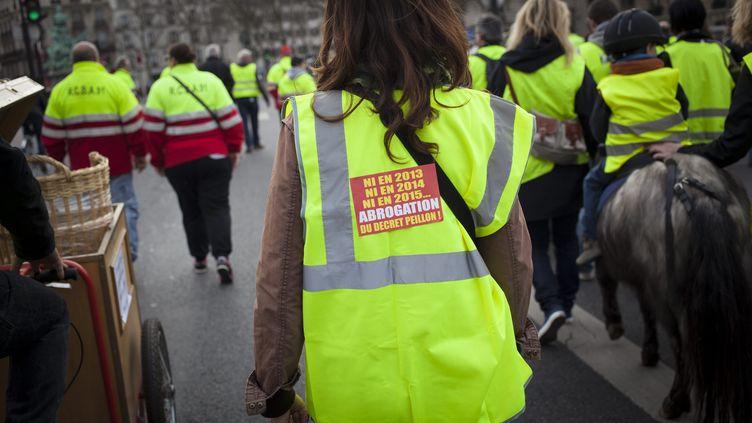 Un rassemblement des Gilets jaunes, un collectifopposé à la réforme des rythmes scolaires, le 15 mars 2014 à Paris. (  MAXPPP)