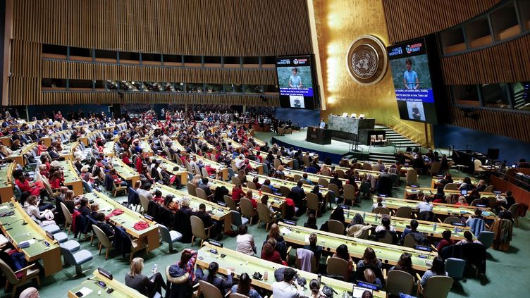 L'Assemblée générale des Nations-Unies, le 6 mars 2020. (TAYFUN COSKUN / ANADOLU AGENCY / AFP)