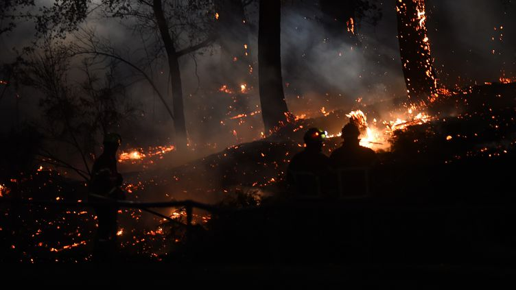 Des pompiers luttent contre les flammes dans la forêt de pins de Chiberta, à Anglet (Pyrénées-Atlantiques), le 30 juillet 2020. (GAIZKA IROZ / AFP)