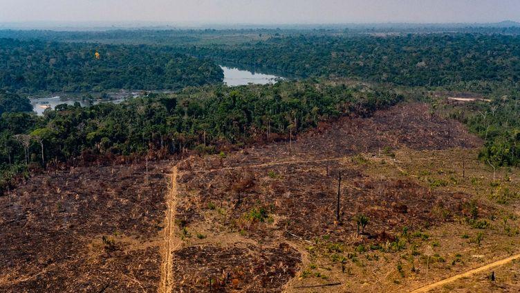 La déforestation en Amazonie (Brésil) vue du ciel, le 29 août 2019. (MAYKE TOSCANO / MATO GROSSO STATE COMMUNICATION  / AFP)
