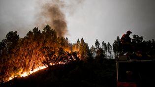 Un incendie de forêt s'est déclaré dans le centre du Portugal, le 18 juin 2017. Ici, sur la commune de Penela. (PATRICIA DE MELO MOREIRA / AFP)