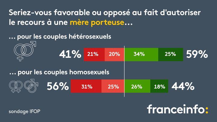 """Selon un sondage Ifop, les Français sont """"majoritairement"""" favorables à la légalisation de la gestation pour autrui (GPA). (FRANCEINFO)"""