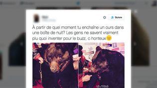 """Une utilisatrice de Twitter s'indigne, le 20 novembre 2016, de la présence d'un ours dans une boîte de nuit d'Ille-et-Vilaine à l'occasion d'une soirée """"cirque"""". (TWITTER)"""