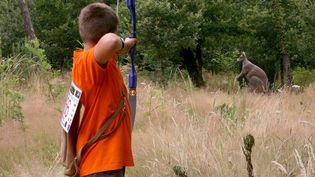 La discipline du tir 3D, avec des cibles en forme d'animaux (MAXPPP)