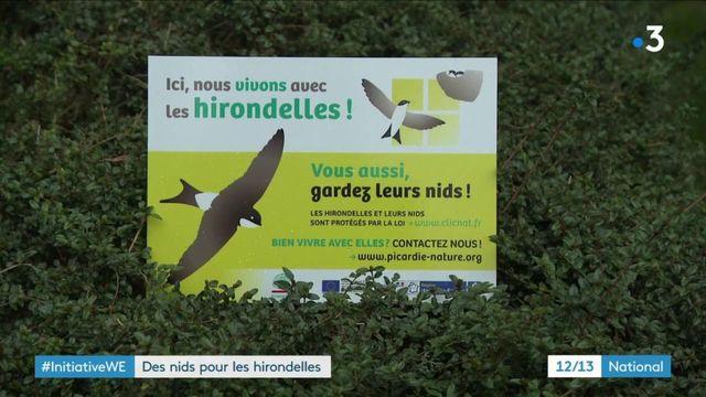 Environnement : des nids pour sauver les hirondelles
