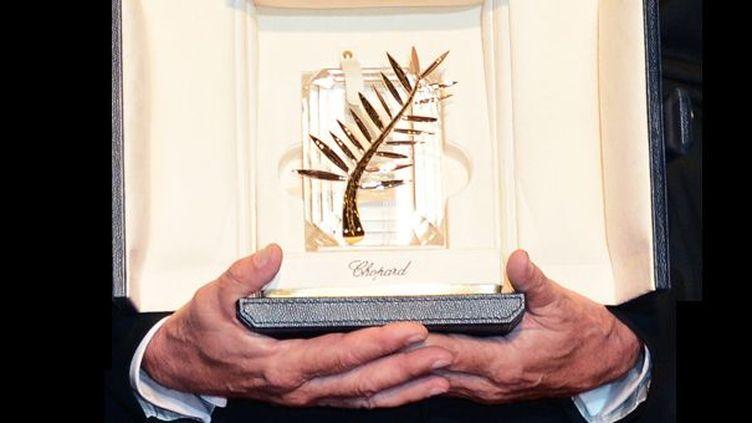Toutes les Palmes d'Or de l'histoire du Festival de Cannes  (Anne-Christine Poujalat / AFP)