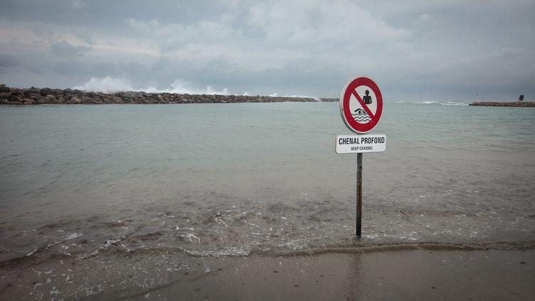 Uneplage de Sète (Hérault), le 26 novembre 2020. (TIZIANA ANNESI / HANS LUCAS / AFP)