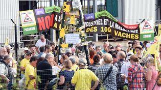 """Des association protestent contre la ferme dite des """"Mille Vaches"""", le 11 septembre 2016à Drucat. (FRANCOIS LO PRESTI / AFP)"""