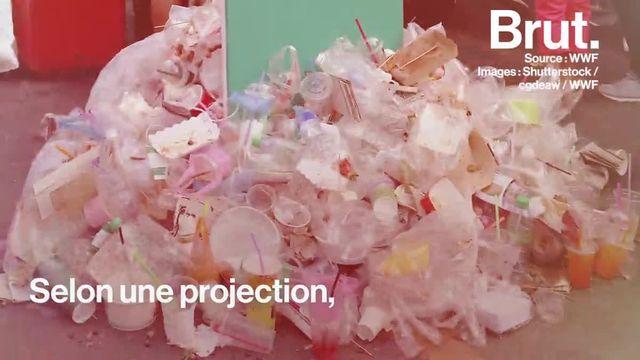 """L'ONG a présenté le  """"scénario 0 plastique dans la nature"""" qui pourrait freiner ces rejets massifs qui menacent l'environnement."""