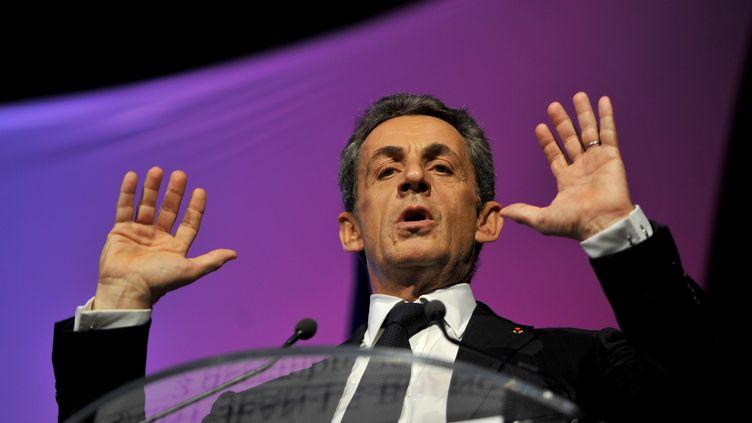 Nicolas Sarkozy lors d'un meeting des Républicains le 2 décembre 2015 à Saint-Jean-Le-Blanc (Loiret). (GUILLAUME SOUVANT / AFP)