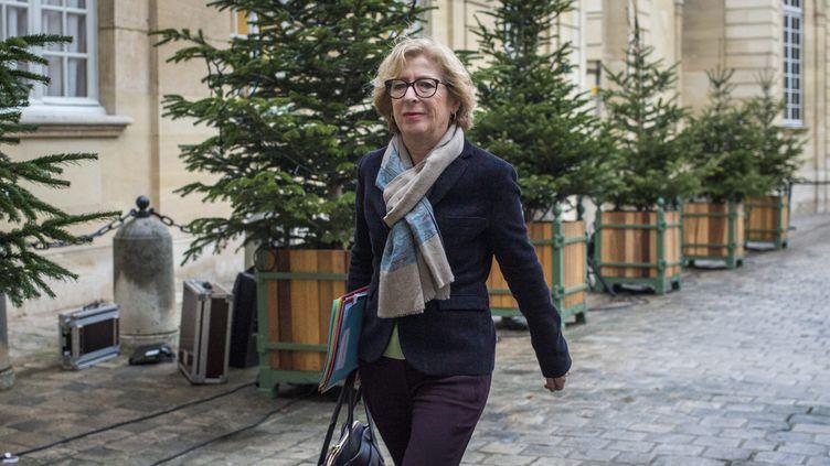 La secrétaire d'Etat chargée de l'Enseignement supérieur et de la Recherche, Geneviève Fioraso, le 8 janvier 2015 à Matignon,à Paris. (MAXPPP)