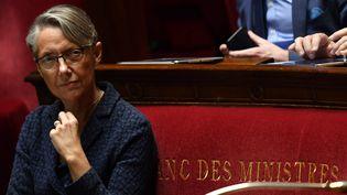 La ministre des Transports Elisabeth Borne, le 17 avril 2018, à l'Assemblée nationale. (GERARD JULIEN / AFP)