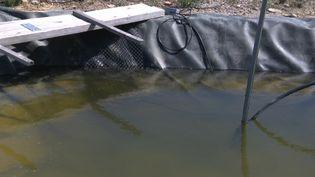 Les eaux usées réutilisées pour l'irrigation agricole dans un village de l'Hérault (France 3 Occitanie)