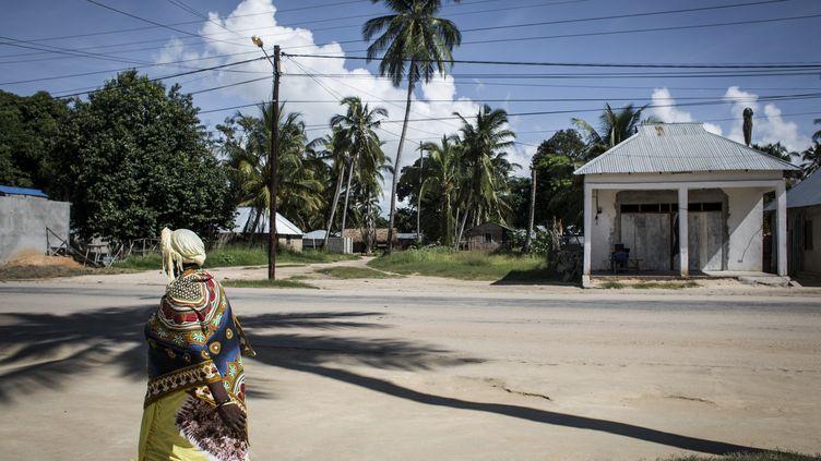 La ville de Palma au Mozambique, le 16 février 2017. Photo d'illustration.  (JOHN WESSELS / AFP)
