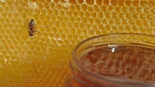 Le printemps froid et pluvieux de 2016 a sérieusement plombé les récoltes des apiculteurs français. (MAXPPP)
