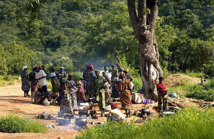 Commerces et cuisine de rue sur le marché de Tanougou (Bénin) (PHILIPPE ROY / AURIMAGES)
