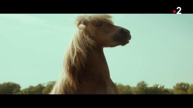 "Cinéma : ""Poly"" sort en salle mercredi 21 octobre"