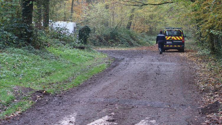 Un fourgon de gendarmerie, le 17 novembre 2019, près du lieu où le corps d'une jeune femme enceinte a été retrouvé, dans la forêt de Retz (Aisne). (MAXPPP)