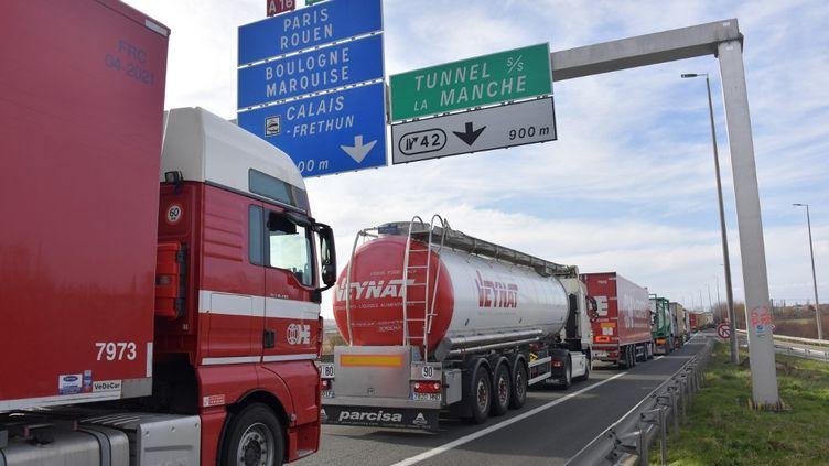 Des camions entre Dunkerque et Calais (Pas-de-Calais), le 4 mars 2019. (PHILIPPE HUGUEN / AFP)