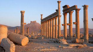 La cité antique de Palmyre, en Syrie  (Tibor Bognar / PHOTONONSTOP / AFP)