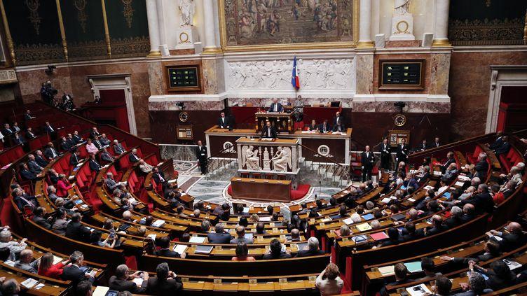L'hémicycle de l'Assemblée nationale, à Paris, le 18 juillet 2012. (FRANCOIS GUILLOT / AFP)