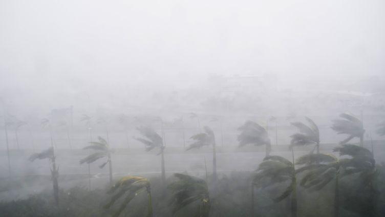 L'ouragan Irma s'abat sur Miami, en Floride (États-Unis), le 10 septembre 2017. (SAUL LOEB / AFP)