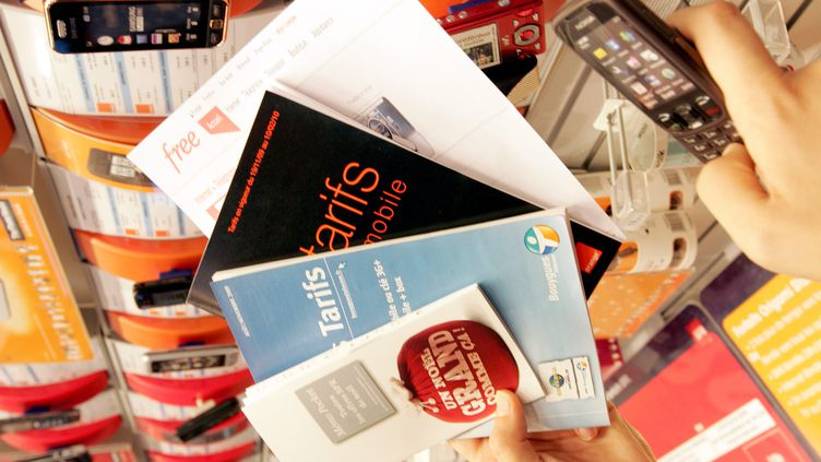 Déjà présent sur le marché des offres Triple Play, Free souhaite à présent se lancer dans la téléphonie mobile. (LE TELEGRAMME / MAXPPP)