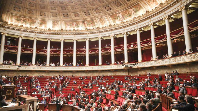 L'hémicycle de l'Assemblée nationale, lors d'une séance de questions au gouvernement, le 4 février 2015 (HAMILTON/REA)
