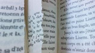 Les premiers mots des 555 romans prévus pour la rentrée littéraire 2013  (Laurence Houot / Culturebox)