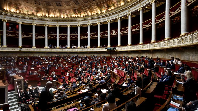 L'hémicycle de l'Assemblée nationale, à Paris, le 1er août 2017. (PHILIPPE LOPEZ / AFP)