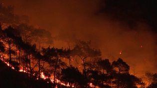 Turquie : d'importants incendies touchent le pays (France 3)