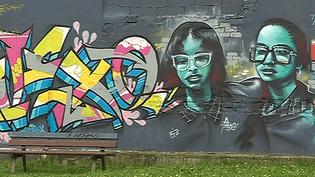 Le street art explose à Strasbourg  (France 3 / Culturebox )