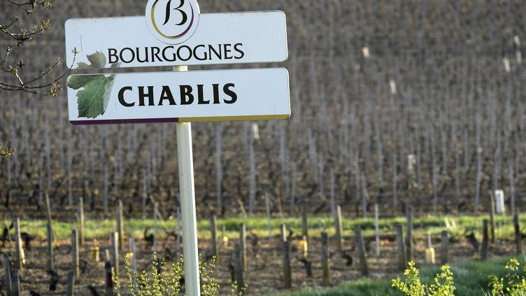 Une parcelle de vignes de Chablis, à Maligny, près d'Auxerre (Yonne), en 2017 (illustration). (PHILIPPE DESMAZES / AFP)