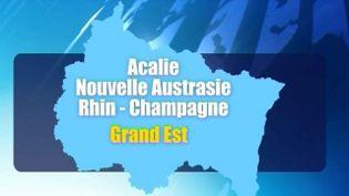 Les quatre propositions pour la région Alsace Champagne-Ardenne Lorraine. (FRANCE 3 ALSACE)