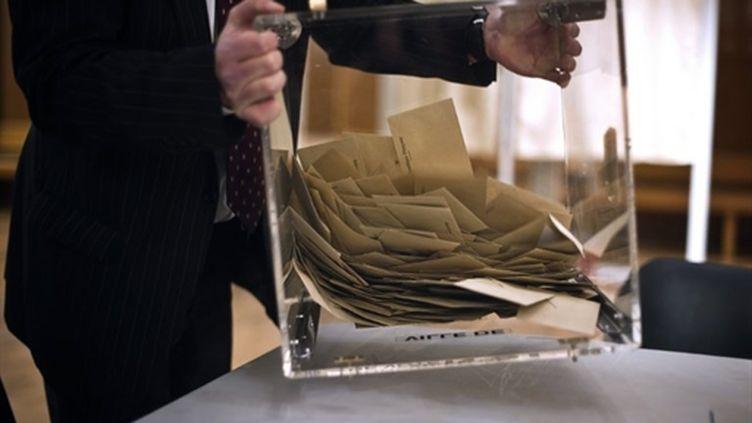 Le texte encadrant les primaires a été adopté par le parti socialiste le 3 juillet 2010. (AFP - Jeff Pachoud)