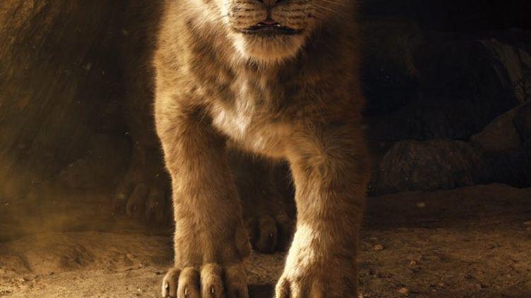 """Le film """"Le Roi Lion"""", remake du célèbre dessin-animé, sortira en salles en juillet 2019. (DISNEY)"""