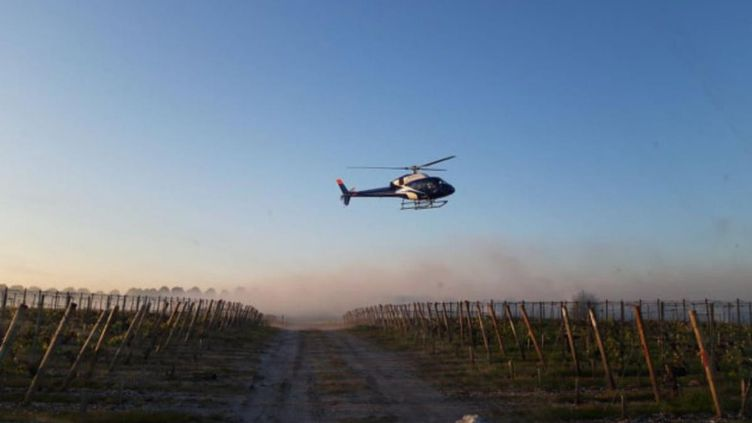 Le passage des hélicoptères permet de réchauffer l'air autour des vignes et de lutter contre le gel. (Chateau d'Arsac)