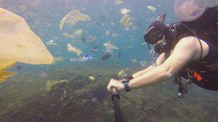 Rich Horner plonge au milieu de poissons et de déchets, le 3 mars 2018, au large de Bali (Indonésie). (CHEESEANDJAMSANDWICH / YOUTUBE)
