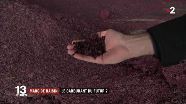 Aquitaine : le marc de raisin, carburant du futur ?