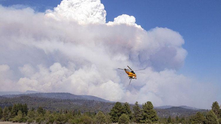 """Un hélicoptère tente verse de l'eau sur le """"Bootleg Fire"""", un gigantesque incendie en Californie (Etats-Unis), le 15 juillet 2021. (PAYTON BRUNI / AFP)"""