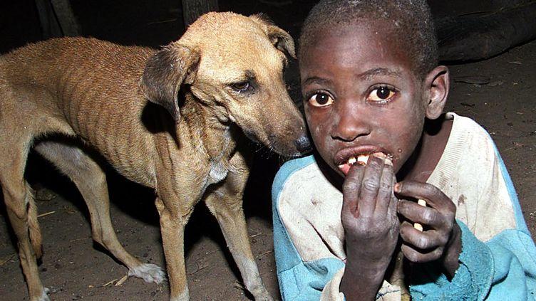 Un enfant zimbabwéen dans la région de Binga, à environ 600 km de Hararé, la capitale du pays, le 13 octobre 2002. (ARON UFUMELI / AFP)