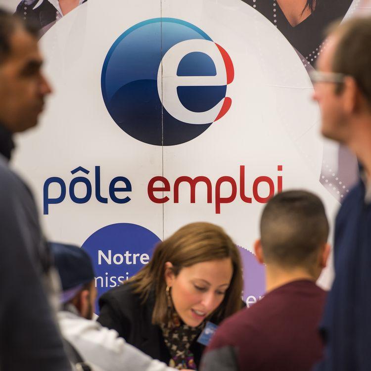 Lancé en partenariat avec Pôle emploi, le site bob-emploi.fr ambitionne defaire baisser le chômage de 10%. (PHILIPPE HUGUEN / AFP)