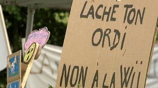 Affiches militantes faites à la main au bonheur des mômes du Grand Bornand 2013  (France3 / Culturebox)