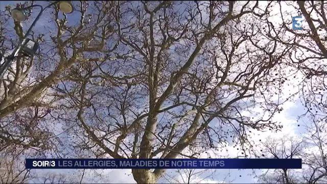 Printemps : une période difficile pour les personnes allergiques