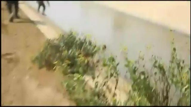 Au Pérou, les policiers ont formé une chaîne humaine pour sauver un chien de la noyade